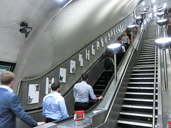 Cats take over Clapham Common station (DaveAFlett) Tags: cats claphamcommon londonunderground tube advertising