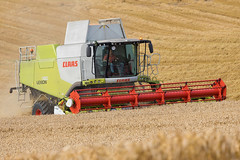 Lexion 760 (Alan10eden) Tags: combine claas lexion 760 tracks wheat crop harvest cut cereal field grain farm farmer grower tillage arable agriculture ulster northernireland canon 80d 70200 f40is machinery machine thresh straw bread flour header reel