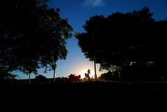 Cabalga hacia al atardecer (Laura Susana.) Tags: atardecer arboles siluetas contraluz sol sunset park kids blue azul parque juegos nios end