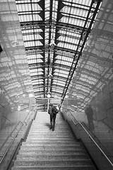 colonia_1140 (s i l v i a) Tags: germany bn bw blackandwhite bianconero street people koln colonia railwaystation renania westfalia rail stairs man hauptbahnhof cologne innenstadt noiretblanc