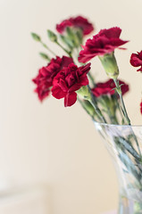 Just because...{Explored} (clickinmum) Tags: flowers red 35mm happy nikon explore vase f18 explored d7000
