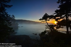 Washington (Michael Leggero) Tags: ocean trees sunset seascape nature water fog sunrise landscape michael washington rocks waves unitedstates pacific tide northamerica leggero seastacks