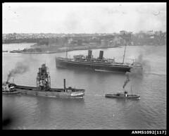 MUSCOOTA and coal hoist, Sydney Harbour