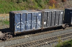 CASH on NS Trash Train 20121017 Gallitzin PA (rmccallay) Tags: graffiti ns cash norfolksouthern trashtrain gallitzintunnel gallitzinpennsylvania
