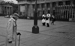 """Pandas! I hate those Guys"" (Sibokk) Tags: street zorki camera uk blackandwhite bw white black film 35mm photography mono scotland edinburgh streetphotography 400 push 800 processed ilford 4k hp5plus bwfp believeinfilm"