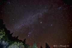 Orionid  Meteor Shower 2012 (sailingsue) Tags: light painting shower orion meteor 2012 orionid