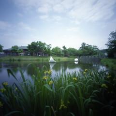 (miwas) Tags: 120 6x6 film square sapporo pond pinhole 120film zero2000 zeroimage 66 f138 sapporoartpark