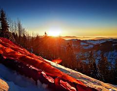 Marbachegg (Daniel Wildi Photography) Tags: trees sunset mist snow nature clouds landscape fly view flight bluesky hills afterwork paragliding paraglider 2012 firs gleitschirm marbach marbachegg danielwildiphotography