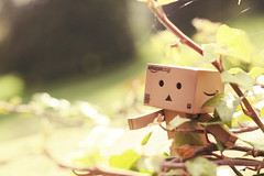 into the wild (Otters are great) Tags: light plants toy toys amazon foliage jp danbo danboard