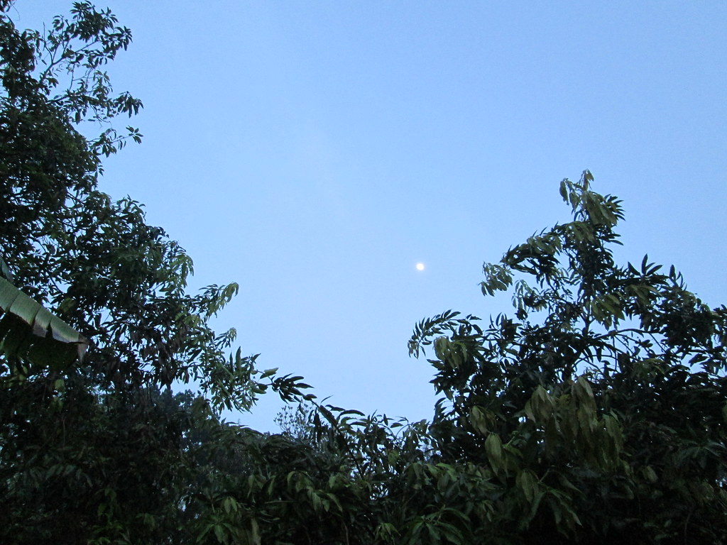 The Worldu0027s Best Photos of langit and pemandangan - Flickr
