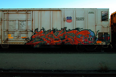 KNISTTO (DCAN 1) Tags: zee rxr fgs knistt gtl knistto 123112
