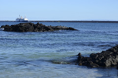 Galapagos - Fernandina Island - view of MV Santa Cruz (2) (sweetpeapolly2012) Tags:
