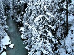 Small stream (Jaedde & Sis) Tags: winter snow creek forest austria tirol waterfall stream gamewinner challengeyouwinner gamex2 sjolden pregamewinner perpetualwinner
