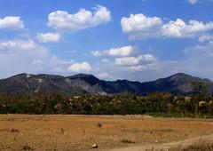 Landscape @Haridwar