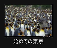 始めての東京 #東京 (Demochi.Net) Tags: life cute sexy japan fun japanese motivator culture 日本 ペット 猫 demotivator 金 家族 結婚 ゲイ 女 子供 おっぱい 愛犬 政治 社会 巨乳 文化 眼鏡 教育 demotivators 経済 女性 初恋 r18 女子 カップル 子猫 女装 お笑い motivators 会社 少子化 企業 ユーモア 恋 悪い 格差 風刺 一言 デモチ 大喜利