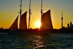 Schooner (krys.mcmeekin) Tags: empiresandy lake boat cntower toronto nikon d750 sunset