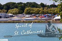 2016 Royal Canadian Henley Regatta (ransomtech) Tags: regatta henley stcatharines rowing