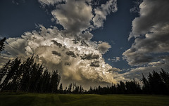 Passing Storm (Terry L Richmond) Tags: stormclouds hail sun backlight backlit trees golf course canon6d