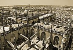 'Architectural Marvel' (EZTD) Tags: eztd eztdphotography eztdphotos photos fotos nikond90 sevilla seville sevilha spain espana espagne spana giralda vista viewpoint skyline dom