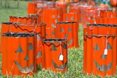 pumpkin buckets (BunnyBear13) Tags: worlds longest yard sale obscure tennessee