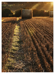 Bales and beams (dunne_s) Tags: second bales beams sunrise stubbles corn naas ireland