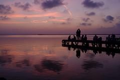 SILHOUETTES IN THE TWILIGHT (JOSE JAVIER GARCIA MARZAL) Tags: albufera elsaler valencia espaa spain paisaje landscape siluetas silhouettes crepsculo twilight fujix100 velviavivid