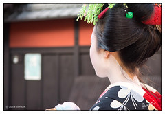 The day I became a Paparazzi (msankar4) Tags: gion geisha geiko hangyoku maiko kyoto memoir ochaya chaya teahouse sake kimono japan beauty silk traditions msankar sankarraman sankarramanphotography