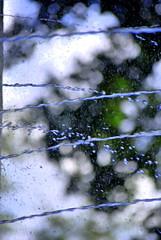 Water (hannah_bergmann) Tags: water drops tropfen wassertropfen beautiful nikon nikond60 art