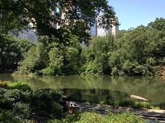 Central Park (ilaa_e) Tags: centralpark nyc newyork nature