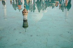 TAJ MAHAL, Agra / India (monoauge) Tags: tajmahal reflection reflexion india indien 2016 travel reisereisefotografie travelphotography tourists touristen towers trme funny interesting spectacular popular worldheritage weltkulturerbe nikon nikond7000 d7000 water wasser brunnen well