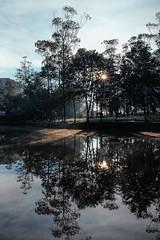 The Eye(s) of morning Sunrise Morning Forest Camping EyeEm Best Shots Reflection Lake Nature Pine Tree EyeEm Nature Lover Eye4photography (notalux) Tags: sunrise morning forest camping eyeembestshots reflection lake nature pine tree eyeemnaturelover eye4photography