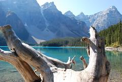 Moraine Lake_Valley of the 10 Peaks (Sahnesteif) Tags: wandern morainelake landschaft berge kanada canada camping see lake