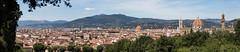 Firenze-Panorama.jpg (n'oras_et_narie) Tags: firenze duomo panorama boboli florence