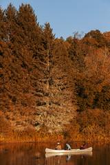 (Levi Mandel (@levimandel)) Tags: downsville ny newyork upstate fall autumn foliage color lake canoe trip cute friends gothamist
