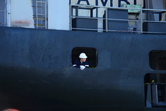 Carolina Star DST_4679 (larry_antwerp) Tags: 9210062 carolinastar metrostarmanagement metrostar container antwerp antwerpen       port        belgium belgi          schip ship vessel