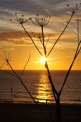 Morning seaside silhouettes (series) (Kirkleyjohn) Tags: silhouette morning suffolk sun sunrise sky skies lowestoft kirkley