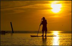 Sunset SUP'er (MurrayH77) Tags: nc obx pea island nwr sunset sup paddle kayak mygearandme mygearandmepremium mygearandmebronze mygearandmesilver mygearandmegold b2nw hatteras kayaking