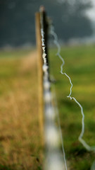 Focus (likrwy) Tags: field fence depthoffield electricfence donttrythisathome igotafewvolts