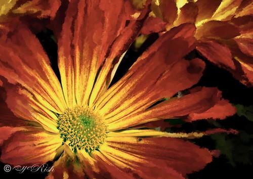 eyeRish-Flower-Painting-02-