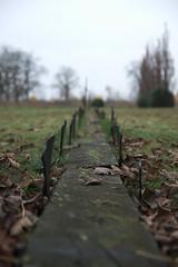 The graveyard of St Lars (LisaOlsson) Tags: lund graveyard skåne sweden sverige cementary asylum grav mentalhospital gravsten kyrkogård stlars mentalsjukhus