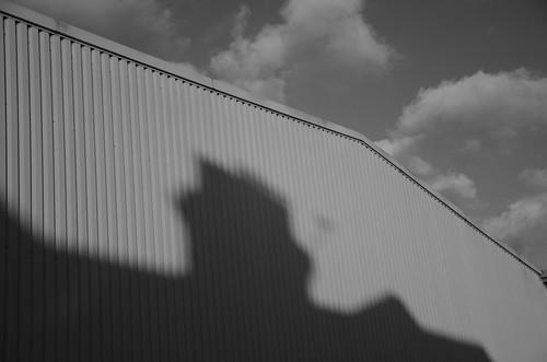 The shadow's dreams ©  Still ePsiLoN