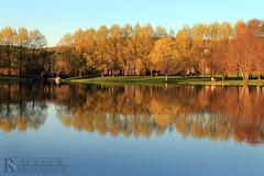 Taylor Lake in Spring