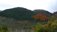 Inversione termica d'autunno