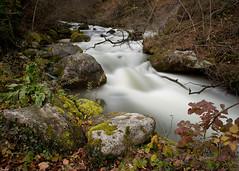 Vapeurs d'Aubonne (Tonton Dave) Tags: nature river landscape switzerland suisse arboretum rivière paysage vaud aubonne bigstopper