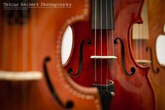 The Art of Violin Making (Tobias Neubert Photography) Tags: canon eger tschechien violin 7d 1750 czechrepublic tamron violins 2012 violine geige cheb violinschool tamron17