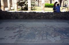 Alexander Mosaic replica, House of the Faun, Pompeii