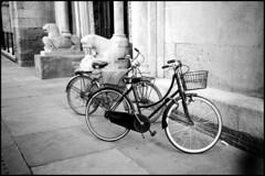 Lions bikes (ZoSo74) Tags: white black film 35mm kodak leoni trix hc110 olympus iso 400 kodaktrix 135 modena bianco negativo nero biciclette 35c pelicola kodakhc110 autaut film:iso=400 film:brand=kodak film:name=kodaktrix400 developer:brand=kodak developer:name=kodakhc110 filmdev:recipe=8583
