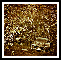 deadend (BettieBlu) Tags: cars abandoned sepia scenery bc rusty roadside bettieblu