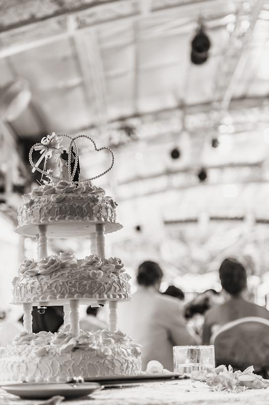 青青食尚, 婚攝, 婚宴,婚禮紀錄,婚禮攝影,2012.10.28-blog-0067