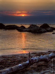 KALLM (Saimir.Kumi) Tags: sunset red sea summer sky sun tree beach rock 22 thankyou july finepix fujifilm albania trung seashore hdr det 2012 durres 3xp plazh kuq hdr3xp diell s9600 peme qiell perendim shkemb ekuqe bregdet kallm
